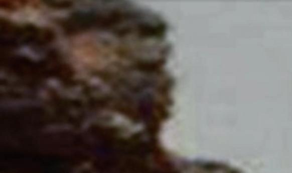 НаМарсе отыскали профиль лица человека