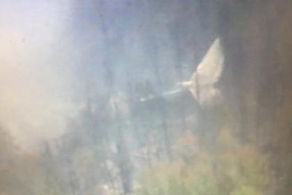 ВИркутской области отыскали обломки пропавшего Ил-76