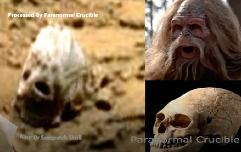 НаМарсе найден таинственный череп йети— ученые-уфологи