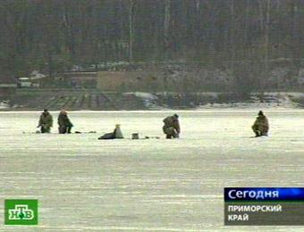 http://www.topnews.ru/upload/img/73bc98b483.jpg