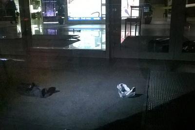 Резня в«Европе»: ребенок сбензопилой на гостей ТЦ