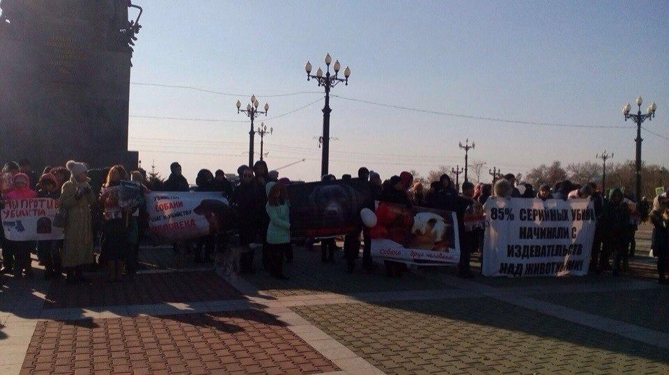 ВХабаровске прошел пикет против девушек-живодерок