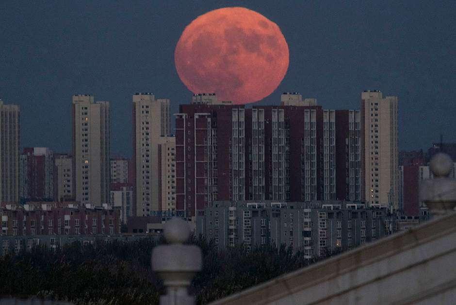 Суперлуние 19 февраля 2019: когда можно наблюдать в России?