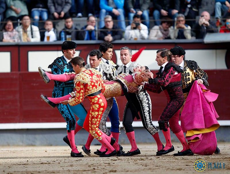 Раненый бык поднял матадора нарога