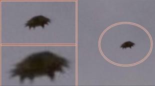 """Смертоносный флот Нибиру засекли на фото с орбиты Земли: конец света назначен на 21 апреля"""""""