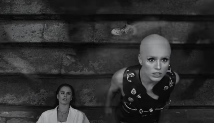 Видео с лысой певицей Zivert шокировало фанатов