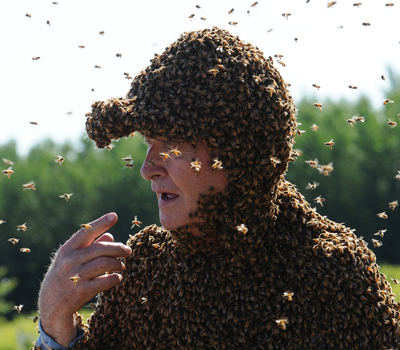 опухоль от укуса пчелы?