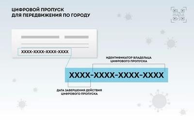 Как получить пропуск - разрешение для передвижения по Москве, разъяснил мэр Собянин (ФОТО)