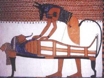 В Египте найдены «собачьи катакомбы» с миллионами собачьих мумий
