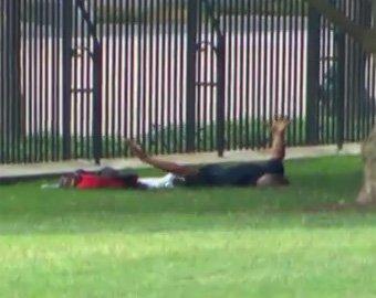 Неизвестный пытался проникнуть в Белый дом в Вашингтоне