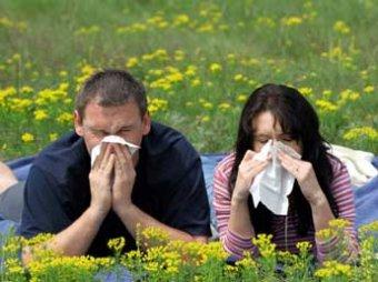 Аллергия.  Симптомы и первая помощь.