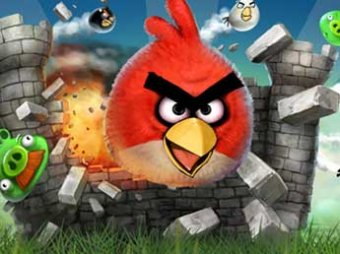 ���������� Angry Birds ������� ������� ����������� ��������