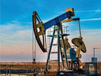 Цены на нефть упали до нового исторического минимума
