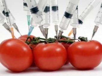 Правительство разрешило сеять в России ГМО