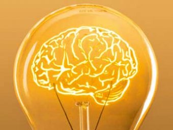 Ученые выяснили, как иностранный язык может помочь сохранить молодость мозга