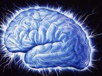 Ученые нашли часть мозга, где прячется сознание человека