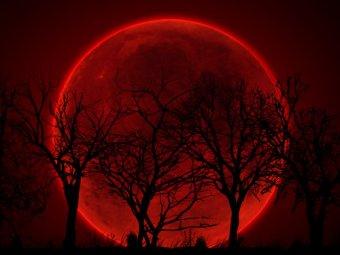 Лунное затмение 8 октября 2014: онлайн-трансляцию проведёт сайт NASA (видео)