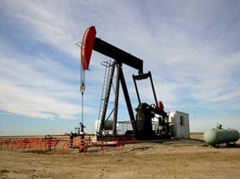 Стоимость нефти Brent упала ниже , Саудовская Аравия не верит в нефть по