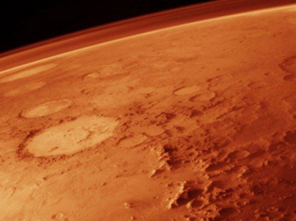 В Сети опубликованы фото погибшего на Марсе существа