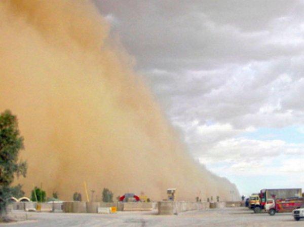 Песчаная буря в Египте заблокировала россиян в аэропорту