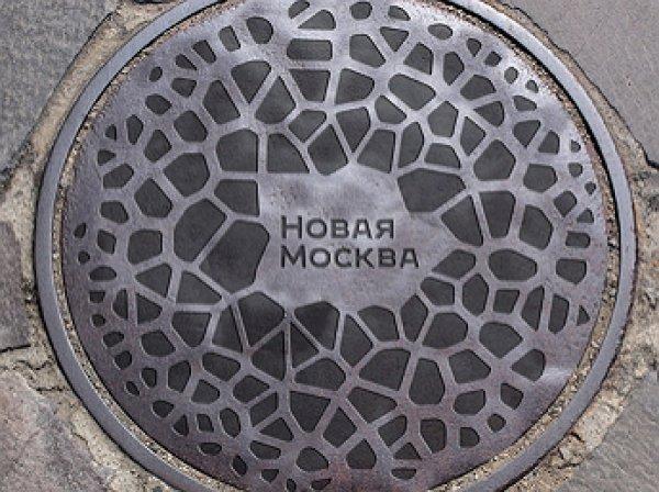 Блогеры заподозрили плагиат в логотипе Новой Москвы за 15 млн рублей