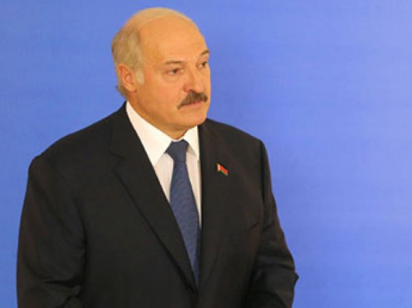 Результаты выборов в Белоруссии 2015: Лукашенко с рекордным числом голосов победил на выборах президента