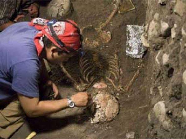 В Испании найдены останки последнего общего предка обезьян и человека