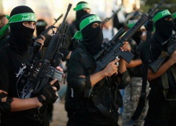 Сирия, последние новости 14 октября: «Исламское государство» объявило джихад России и США