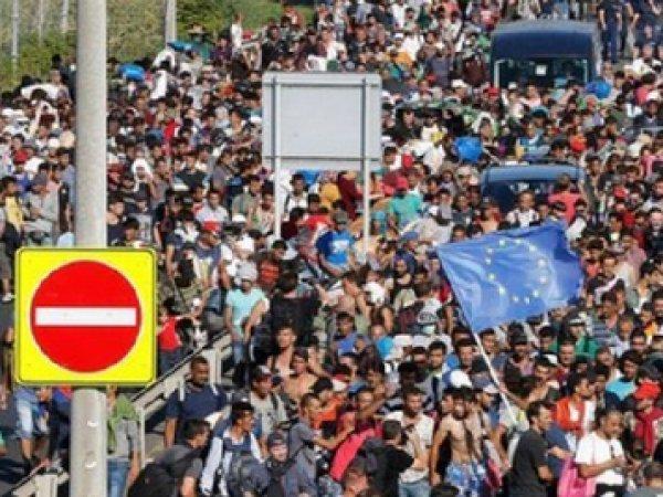 Последние новости о беженцах