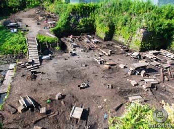 Археологи вскрыли могилы «вампиров» с серпами на шеях в Польше