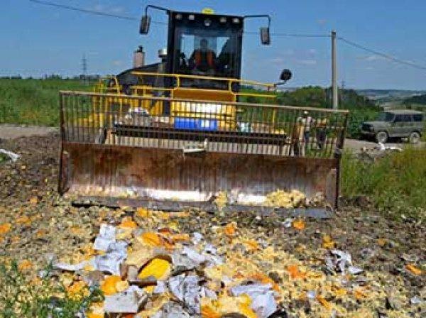 Эксперты: качество овощей и фруктов в России за время эмбарго сильно ухудшилось