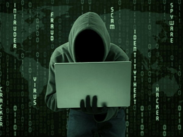 В Сети появилась петиции на награждение хакеров Fancy Bears к медалям