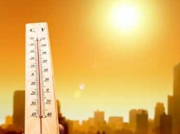 Климатологи рассказали, когда аномально жаркое лето на Земле станет нормой