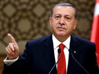 Эрдоган: Турецкая армия вошла в Сирию для свержения Асада