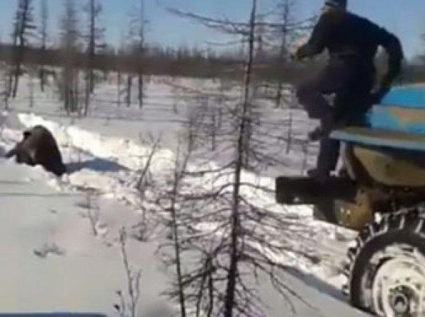 СМИ установили личность вахтовиков — убийц медведя в Якутии (ВИДЕО)