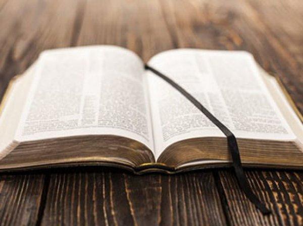 """В РПЦ назвали """"большим перегибом"""" уничтожение 40 Библий по """"закону Яровой"""""""