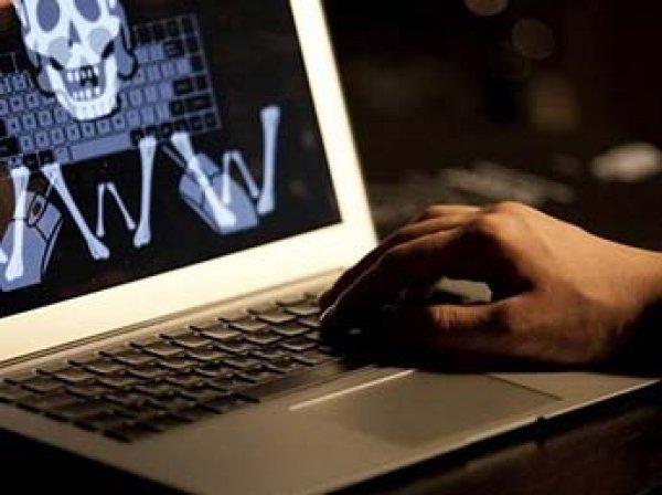 IT-эксперт: российские чиновники и силовики активно скачивают пиратский контент