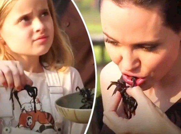 YouTube шокирован ВИДЕО, как Анджелина Джоли накормила своих детей пауками