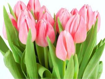 Поздравление с 8 марта на телефон смс фото 872
