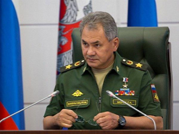 Шойгу доложил Путину о завершении операции по взятию Пальмиры: опубликованы первые фото