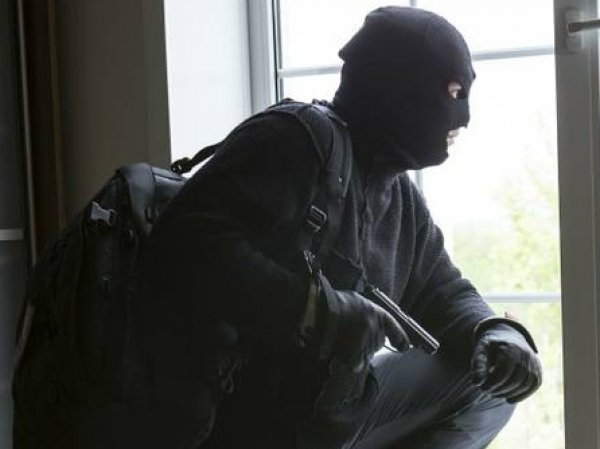 В Новой Москве ограбили коттедж главы департамента МЭР