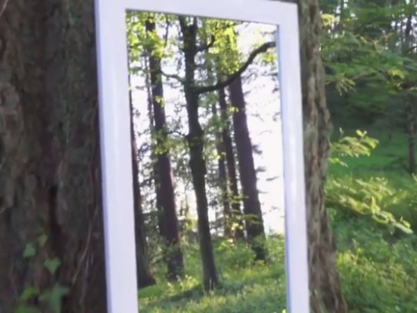 ВИДЕО оптической иллюзии с зеркалом взбудоражило пользователей Instagram