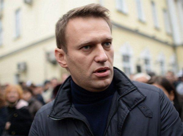 PornHub опубликовал на сайте расследование Навального «Он вам не Димон»
