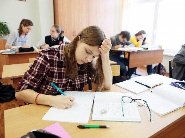 Результаты ОГЭ по математике 2017 по паспорту появились в Сети