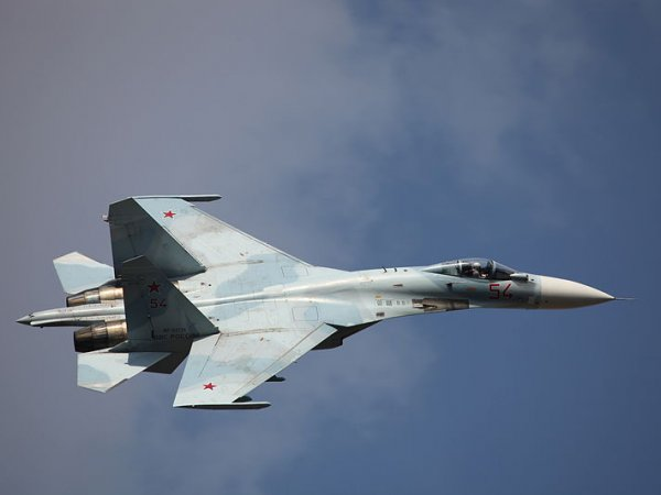 """Российский Су-27 """"отогнал"""" истребитель НАТО от самолета Шойгу"""