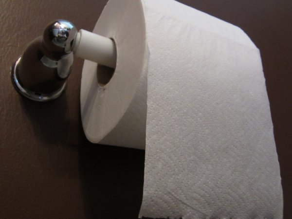 """""""Кража века"""": российские туристы пытались украсть 14 рулонов туалетной бумаги в Турции"""
