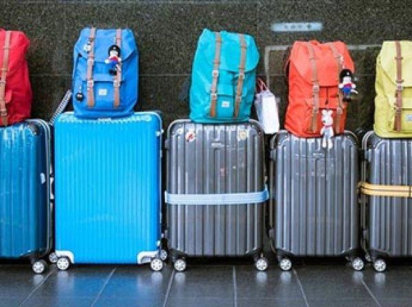 Госдума разрешила авиакомпаниям брать плату за провоз багажа