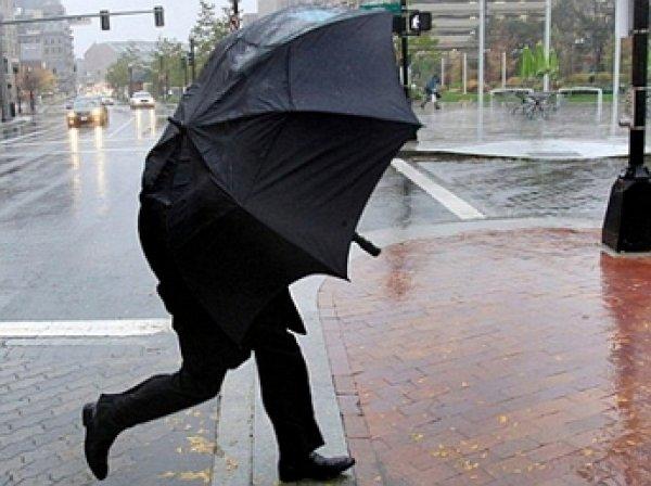 МЧС объявило экстренное предупреждение об ухудшении погоды в Москве