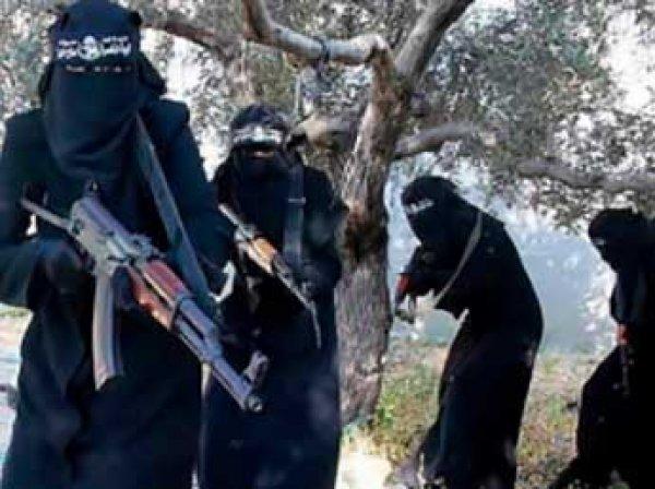 ИноСМИ: в Ираке задержали смертниц из России
