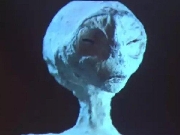 СМИ: уфологи нашли в пустыне Наска пять мумий пришельцев возрастом 1700 лет (ФОТО)